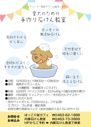 soapws1712_l-357x500